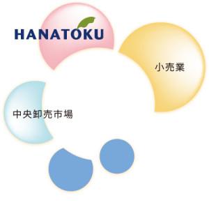 hanatoku_09