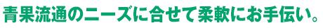 hanatoku_11
